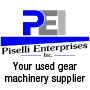 Piselli Enterprises, Inc.