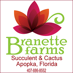 Branette Farms